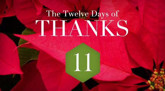 12 Days of THANKS - Day Eleven