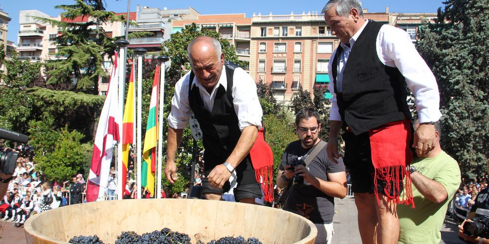 Stomping grapes at the Rioja Wine Festival