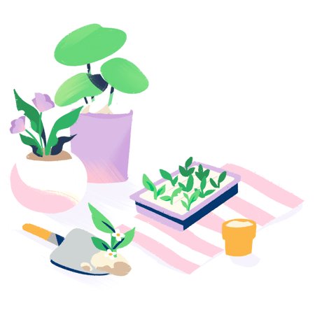 Illustration: Growing plants